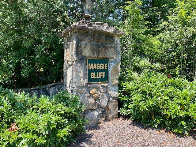 Lot 10 Maggie, Lookout Mountain, GA 30750 (MLS #1319809) :: Chattanooga Property Shop