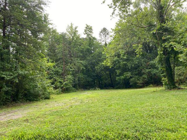 0 Bluff Rd, Dayton, TN 37321 (MLS #1319947) :: Chattanooga Property Shop