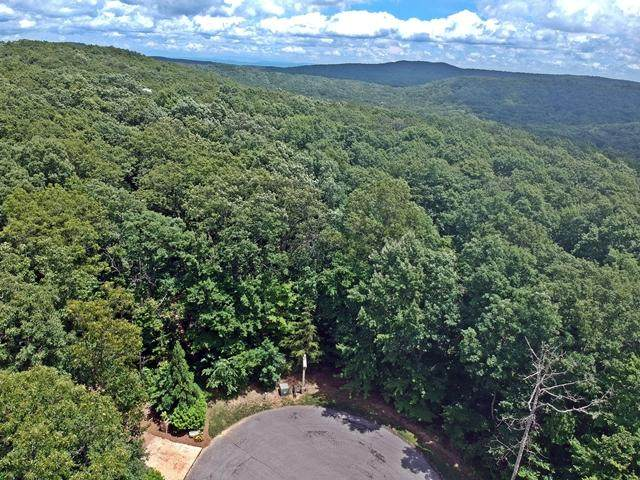 0 N Shivas Crest Lot 59, Rising Fawn, GA 30738 (MLS #1320375) :: 7 Bridges Group