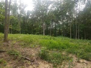 80 Green Acres Dr, Trenton, GA 30752 (MLS #1320587) :: Chattanooga Property Shop