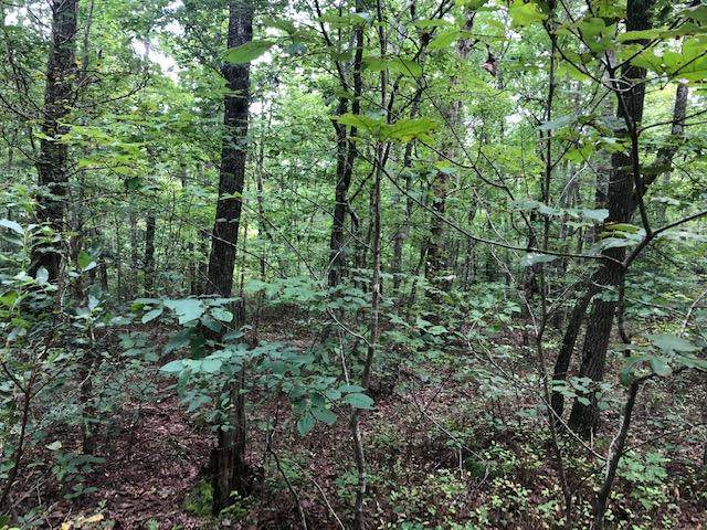 0 Clear Brooks Dr #73, Signal Mountain, TN 37377 (MLS #1325065) :: Chattanooga Property Shop