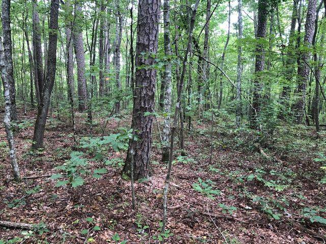 0 Clear Brooks Dr #74, Signal Mountain, TN 37377 (MLS #1325070) :: The Chattanooga's Finest | The Group Real Estate Brokerage