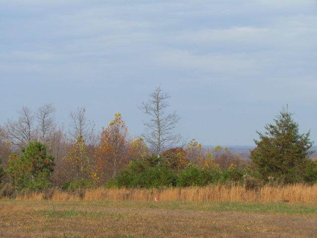 2075 Lower Fire Tower Rd - Photo 1