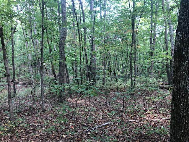 0 157 Hwy Lot 5, Rising Fawn, GA 30738 (MLS #1329248) :: Keller Williams Realty | Barry and Diane Evans - The Evans Group