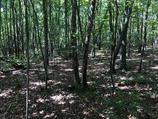 0-A 157 Hwy Lot 4, Rising Fawn, GA 30738 (MLS #1329250) :: Keller Williams Realty | Barry and Diane Evans - The Evans Group