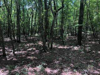 0-B 157 Hwy Lot 3, Rising Fawn, GA 30738 (MLS #1329264) :: Keller Williams Realty | Barry and Diane Evans - The Evans Group