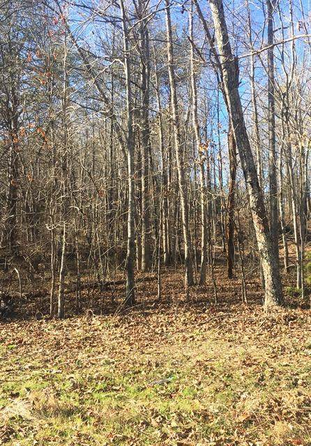 4443 Parker Loop Rd Tract 2, Birchwood, TN 37308 (MLS #1329705) :: Chattanooga Property Shop