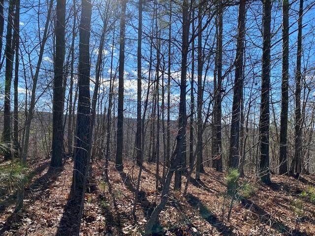 Lot 5 Browns Trace Road Lot 5, South Pittsburg, TN 37380 (MLS #1329982) :: Keller Williams Realty | Barry and Diane Evans - The Evans Group