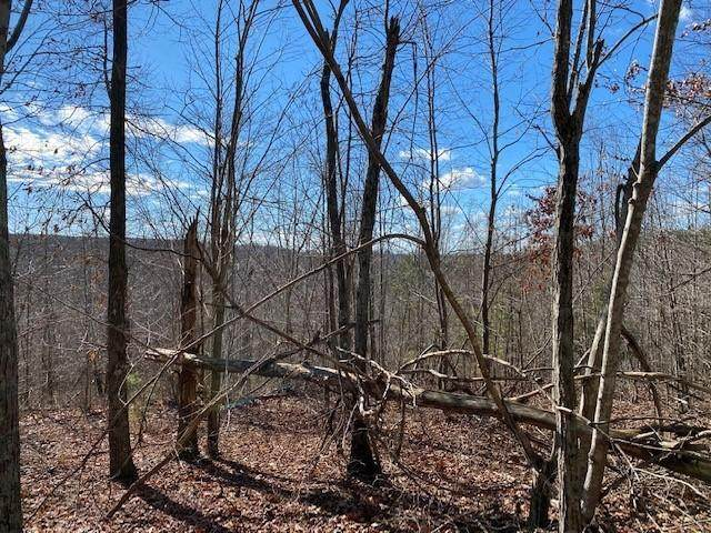 Lot 6 Browns Trace Road Lot 6, South Pittsburg, TN 37380 (MLS #1329984) :: Keller Williams Realty | Barry and Diane Evans - The Evans Group