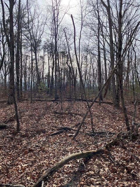 Lot 7 Keener Hill Road Lot 7, Pikeville, TN 37367 (MLS #1333752) :: Austin Sizemore Team