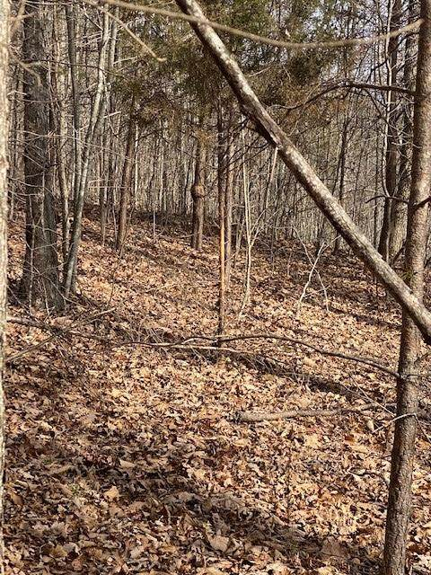 Lot 10 Keener Hill Road Lot 10, Pikeville, TN 37367 (MLS #1333761) :: Austin Sizemore Team