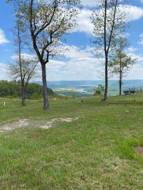 Lot 37 Little Owl Lane Lot 37, Jasper, TN 37347 (MLS #1335405) :: EXIT Realty Scenic Group