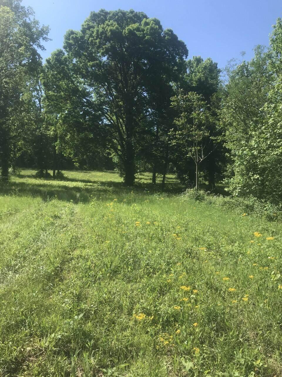 2875 Old Alabama Rd - Photo 1