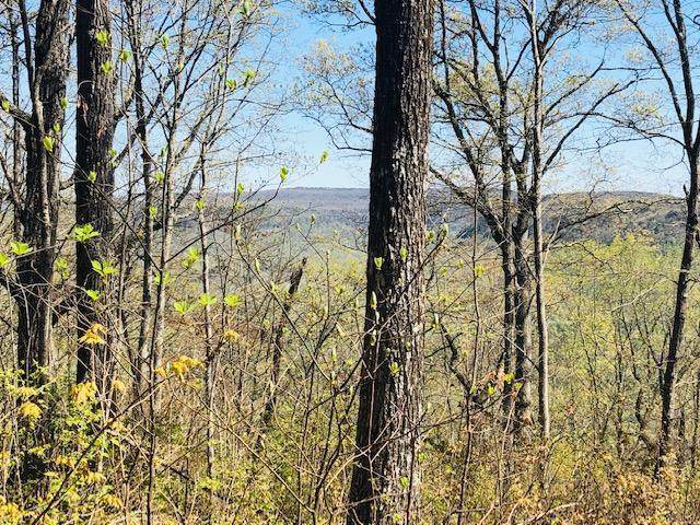 0 Vineyard Point Rd, Sequatchie, TN 37374 (MLS #1335736) :: Keller Williams Realty | Barry and Diane Evans - The Evans Group