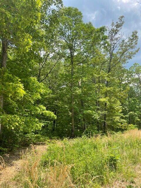 Lot 8 Blumont Drive Lot 8, Altamont, TN 37301 (MLS #1336655) :: Keller Williams Greater Downtown Realty | Barry and Diane Evans - The Evans Group