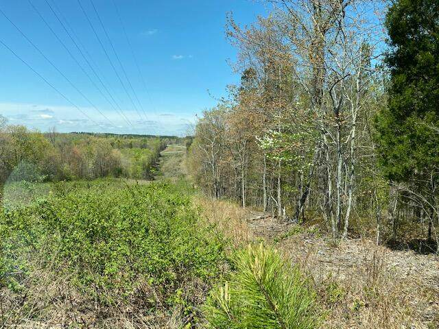 10.20 South Pittsburg Mtn Road, South Pittsburg, TN 37380 (MLS #1336928) :: The Chattanooga's Finest | The Group Real Estate Brokerage