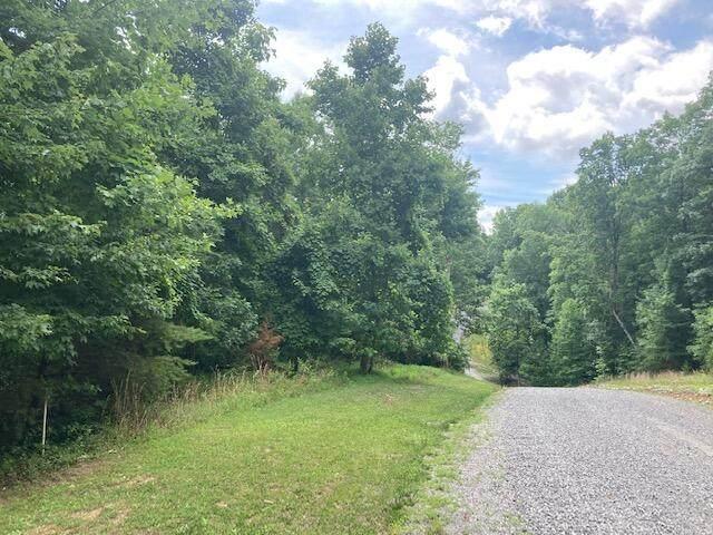 552 Wilderness Way - Photo 1