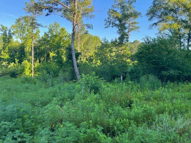 0 Dogwood Valley Rd B, Tunnel Hill, GA 30755 (MLS #1338644) :: Keller Williams Greater Downtown Realty   Barry and Diane Evans - The Evans Group