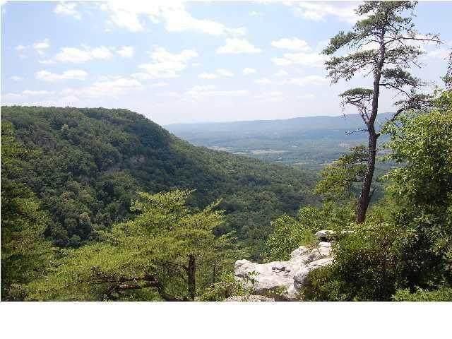 7 Tatum Overlook, Cloudland, GA 30731 (MLS #1339279) :: The Jooma Team
