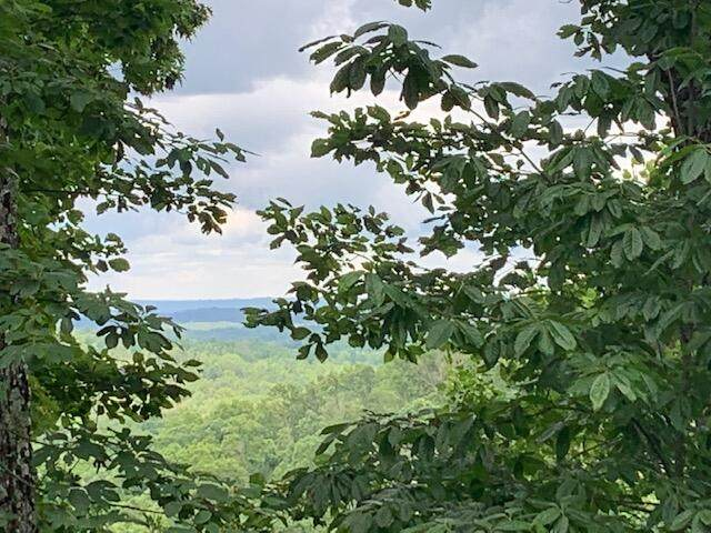Lot 383 Simmons Rd, Pikeville, TN 37367 (MLS #1340000) :: Keller Williams Greater Downtown Realty | Barry and Diane Evans - The Evans Group