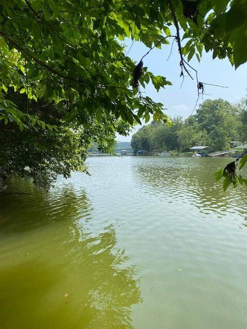 3.37 Hale Boat Dock Road, Doyle, TN 38559 (MLS #1340137) :: Keller Williams Greater Downtown Realty   Barry and Diane Evans - The Evans Group
