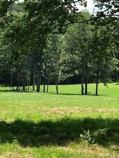 150 Burchfield Cemetery Rd - Photo 1