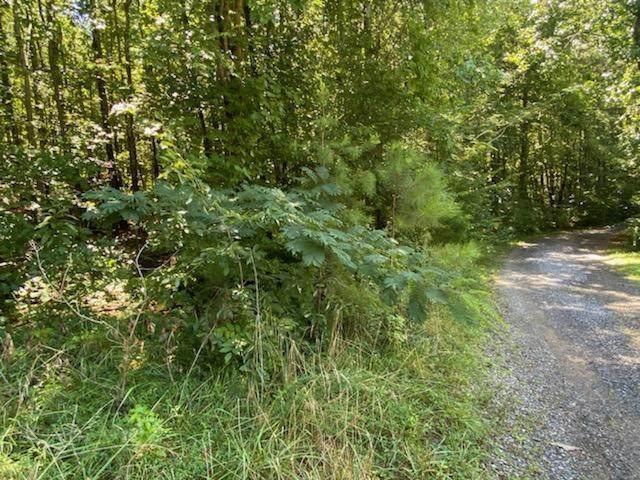 14094 Highway 411, Crandall, GA 30711 (MLS #1341944) :: Keller Williams Realty