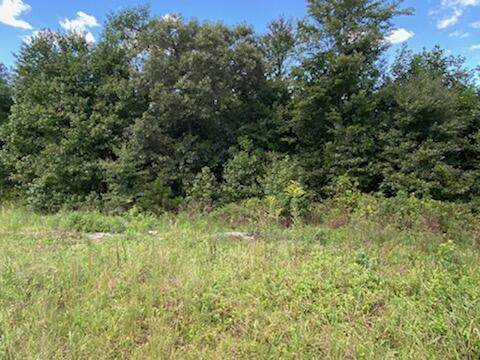 000 Highway 75, Ider, AL 35981 (MLS #1342945) :: Keller Williams Greater Downtown Realty   Barry and Diane Evans - The Evans Group