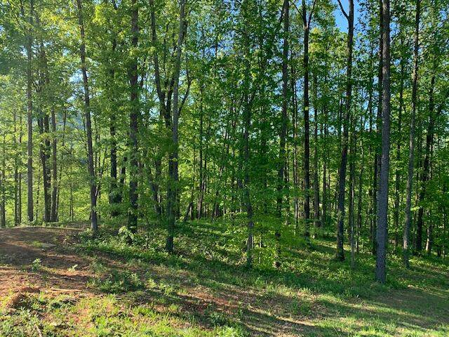 867 Dry Branch Ct Lot 18, Chattanooga, TN 37419 (MLS #1343608) :: Keller Williams Greater Downtown Realty | Barry and Diane Evans - The Evans Group