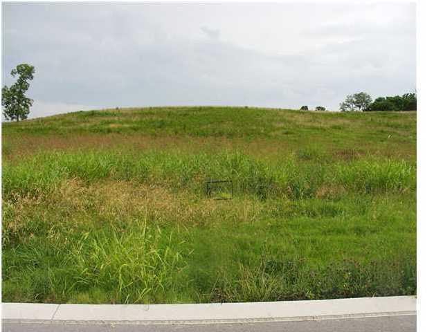 54 Landmark Ln, Dunlap, TN 37327 (MLS #1237555) :: The Robinson Team
