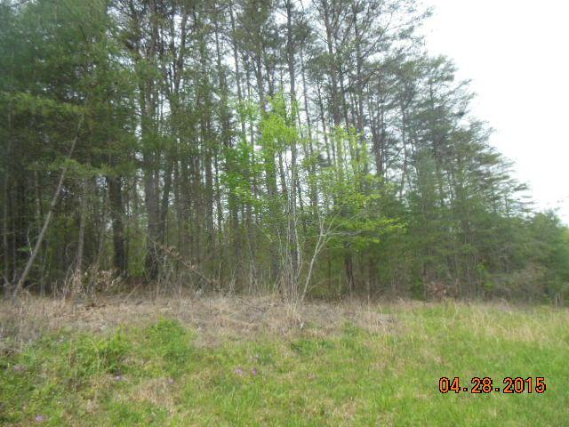 0 Long View Tr, Pikeville, TN 37367 (MLS #1248977) :: Chattanooga Property Shop