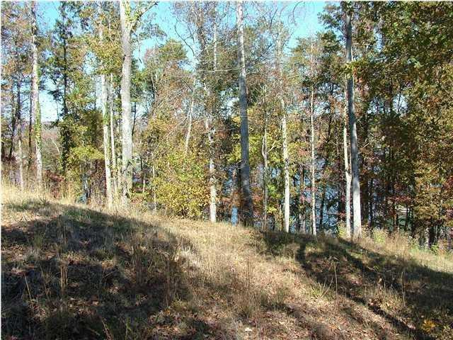 000 Scenic Lakeview Dr, Spring City, TN 37381 (MLS #1252843) :: The Robinson Team