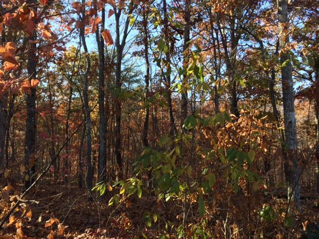 0 Hidden Ridge Rd Lot 23, Dunlap, TN 37327 (MLS #1255818) :: Chattanooga Property Shop