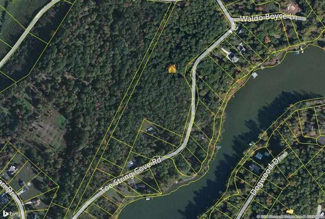 15.6 Acres Toestring Cove Rd 15.6 Acres, Spring City, TN 37381 (MLS #1270813) :: The Robinson Team