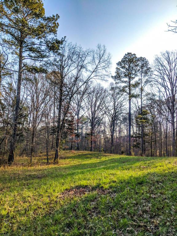 0 Bancroft Rd Lot 13, Mcdonald, TN 37353 (MLS #1277304) :: Chattanooga Property Shop