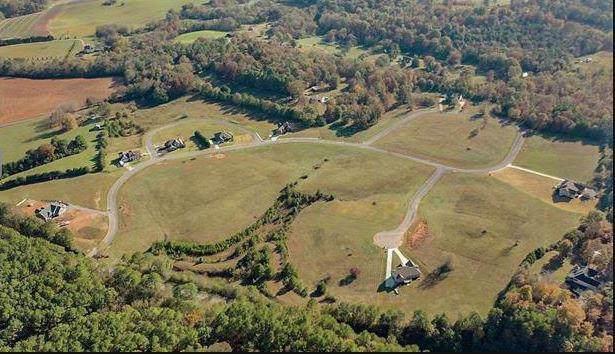 Lot 43 NE Rochelle Cir, Charleston, TN 37310 (MLS #1295649) :: The Robinson Team