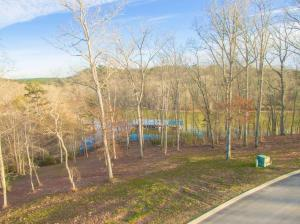 15869 Channel Pointe Dr, Sale Creek, TN 37373 (MLS #1295663) :: Keller Williams Realty | Barry and Diane Evans - The Evans Group
