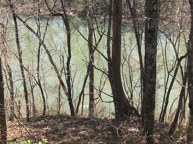 234 Rivers Edge Ln, Benton, TN 37307 (MLS #1296682) :: Keller Williams Realty | Barry and Diane Evans - The Evans Group