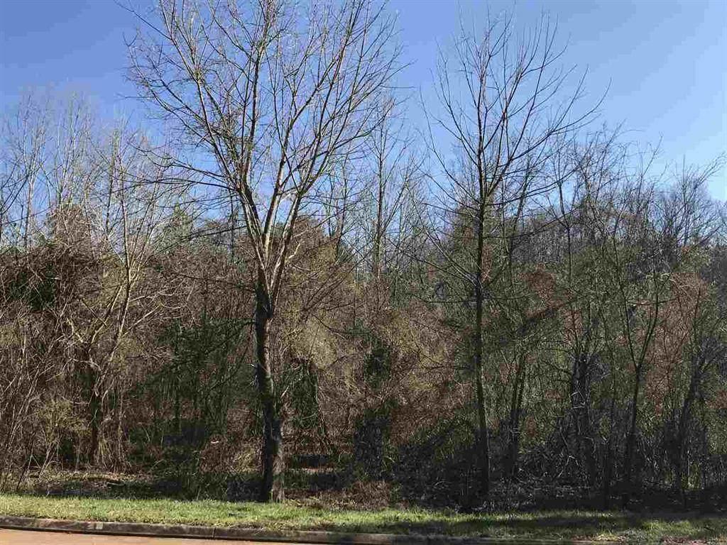 12.74 Acre Doe Run - Photo 1