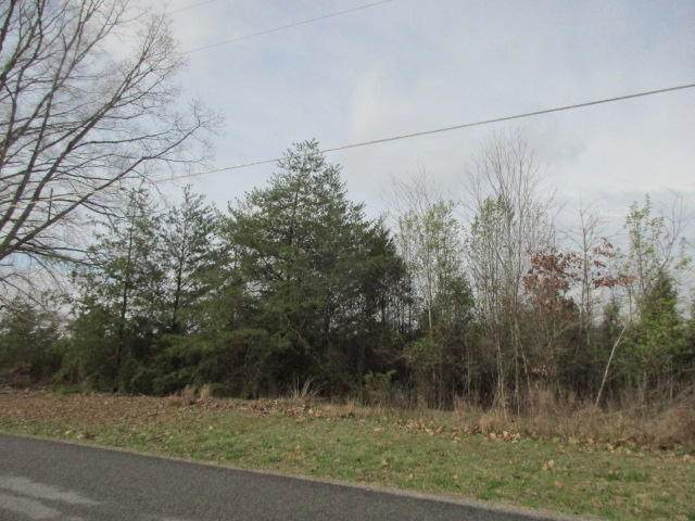 Lot 8 Lake Forest Dr, Spring City, TN 37381 (MLS #1314616) :: Smith Property Partners