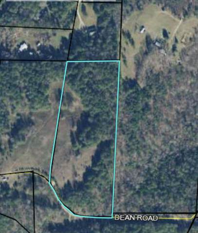 Tract 3 Lick Skillet Rd - Photo 1