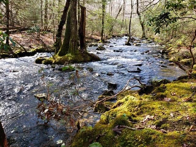 0 Beaten Path #62, Signal Mountain, TN 37377 (MLS #1327876) :: The Robinson Team