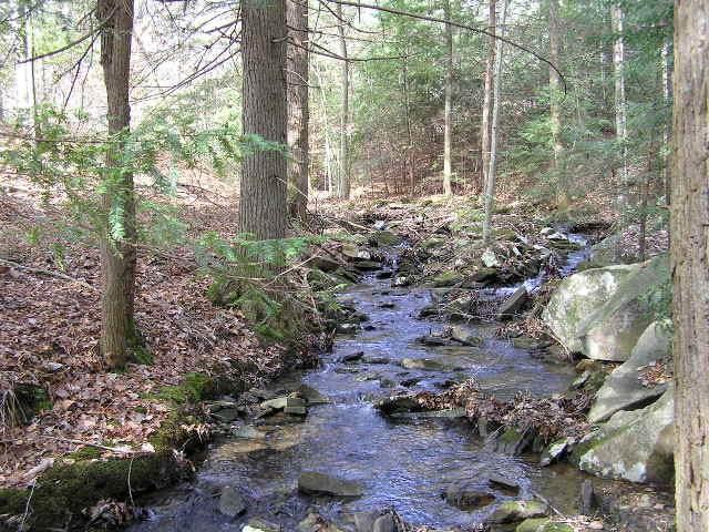 789 Stone Creek Tr - Photo 1