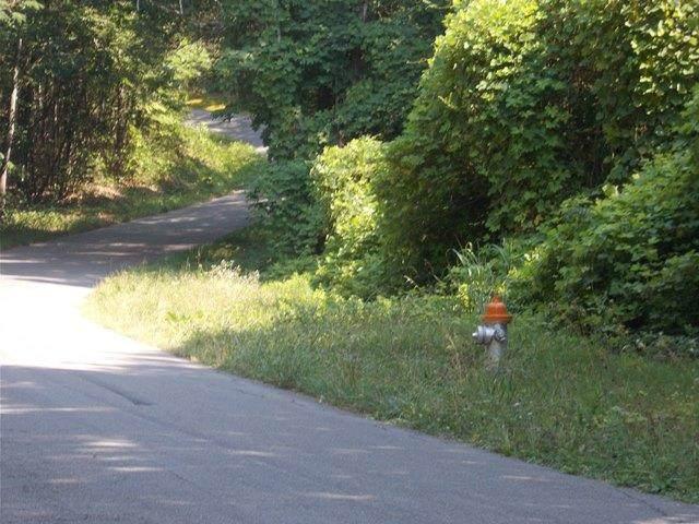 0 Chattanooga Valley Rd, Flintstone, GA 30725 (MLS #1340390) :: Keller Williams Realty