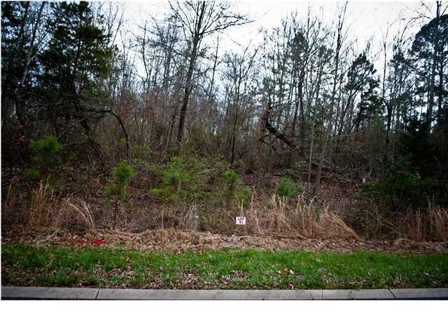 0 Monroe Dr #41, Ringgold, GA 30736 (MLS #1192438) :: Chattanooga Property Shop
