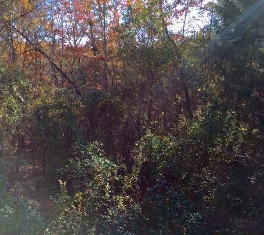 0 Hidden Ridge Loop Lot 4, Dunlap, TN 37327 (MLS #1255836) :: Chattanooga Property Shop
