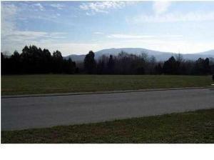 0 Village Dr #24, Chickamauga, GA 30707 (MLS #1272100) :: Chattanooga Property Shop