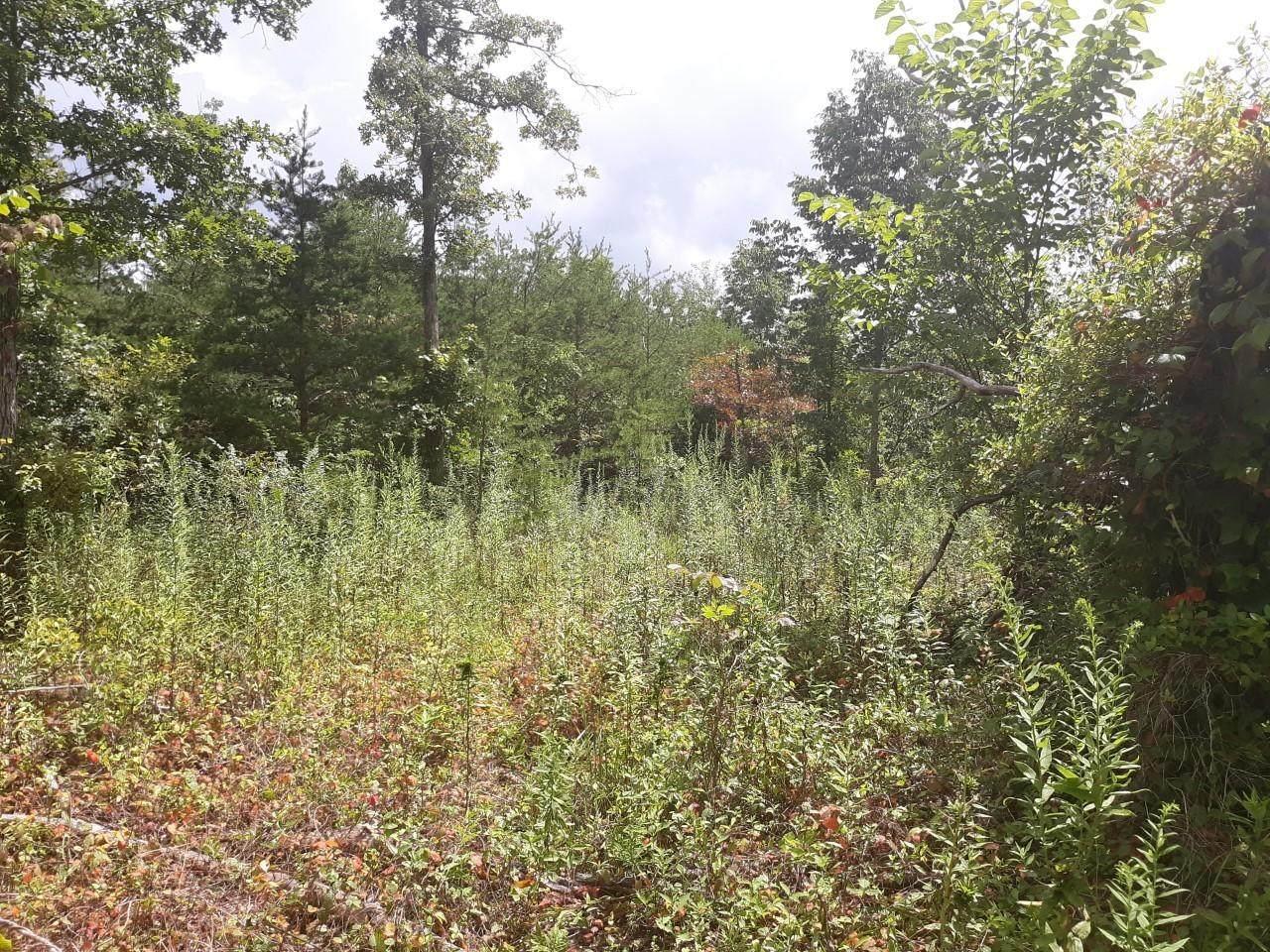 0 Pitts Gap Rd - Photo 1