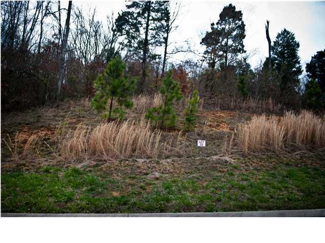 0 Monroe Dr #38, Ringgold, GA 30736 (MLS #1192441) :: Chattanooga Property Shop
