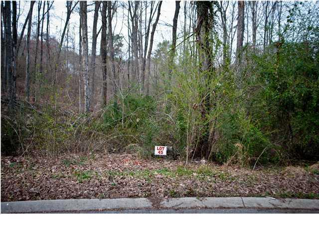 0 Alese Dr #45, Ringgold, GA 30736 (MLS #1192445) :: Chattanooga Property Shop